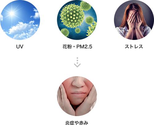 UV、花粉・PM2.5、ストレスなどが皮膚の炎症や赤みを引き起こします。