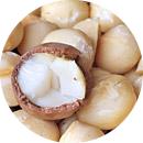 4.マカダミアナッツ脂肪酸