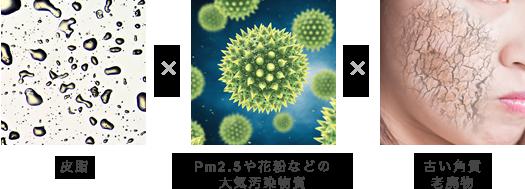 皮脂、PM2.5などの大気汚染物質、古い角質・老廃物